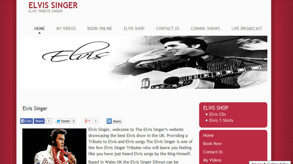 elvis-singer